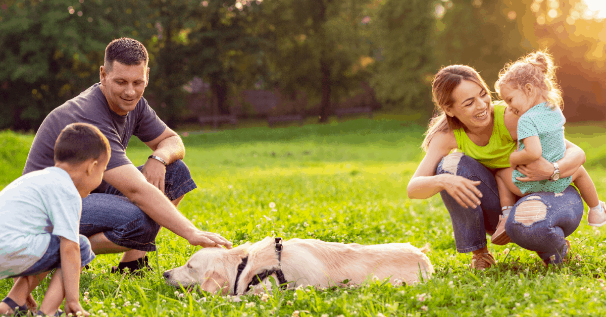 100+ Easy Family Bonding Activities | Benefits of Family Togetherness