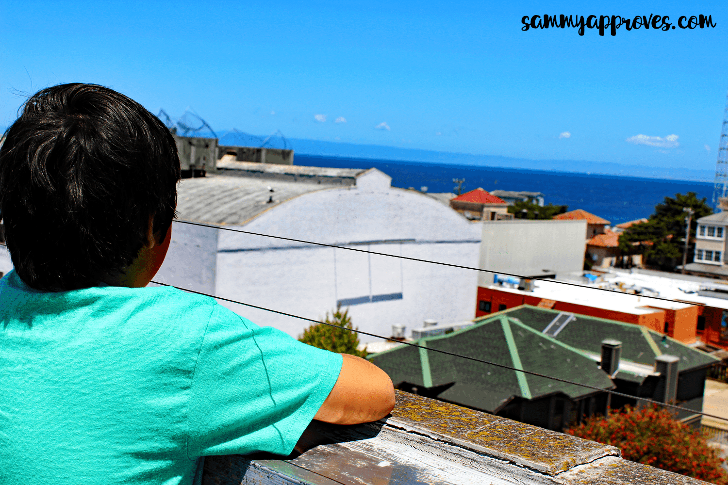 10 Things Your Family Will Love About Monterey, CA | Monterey County