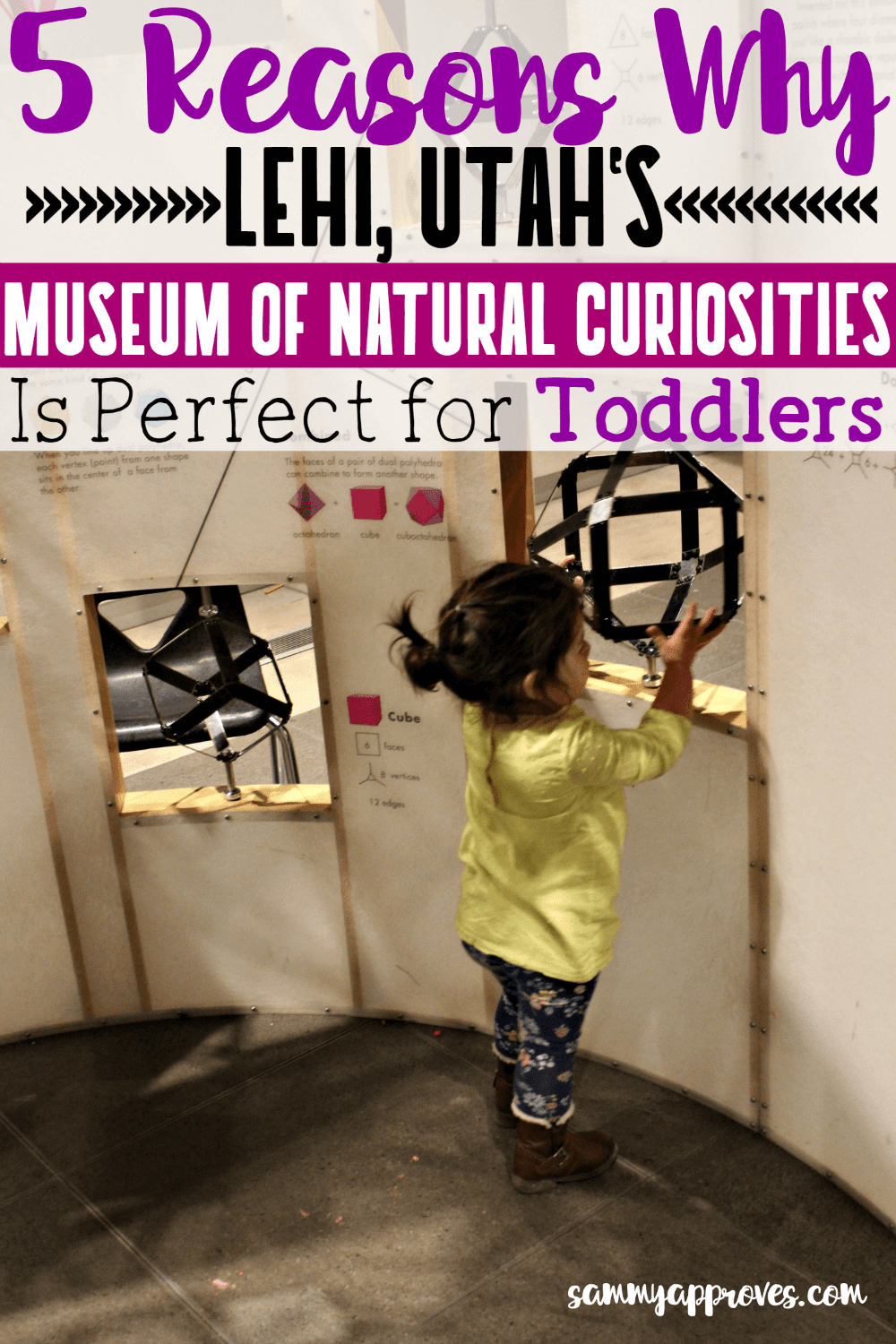 5 Reasons Why Lehi Utah's Museum of Natural Curiosities is Perfect for Toddlers