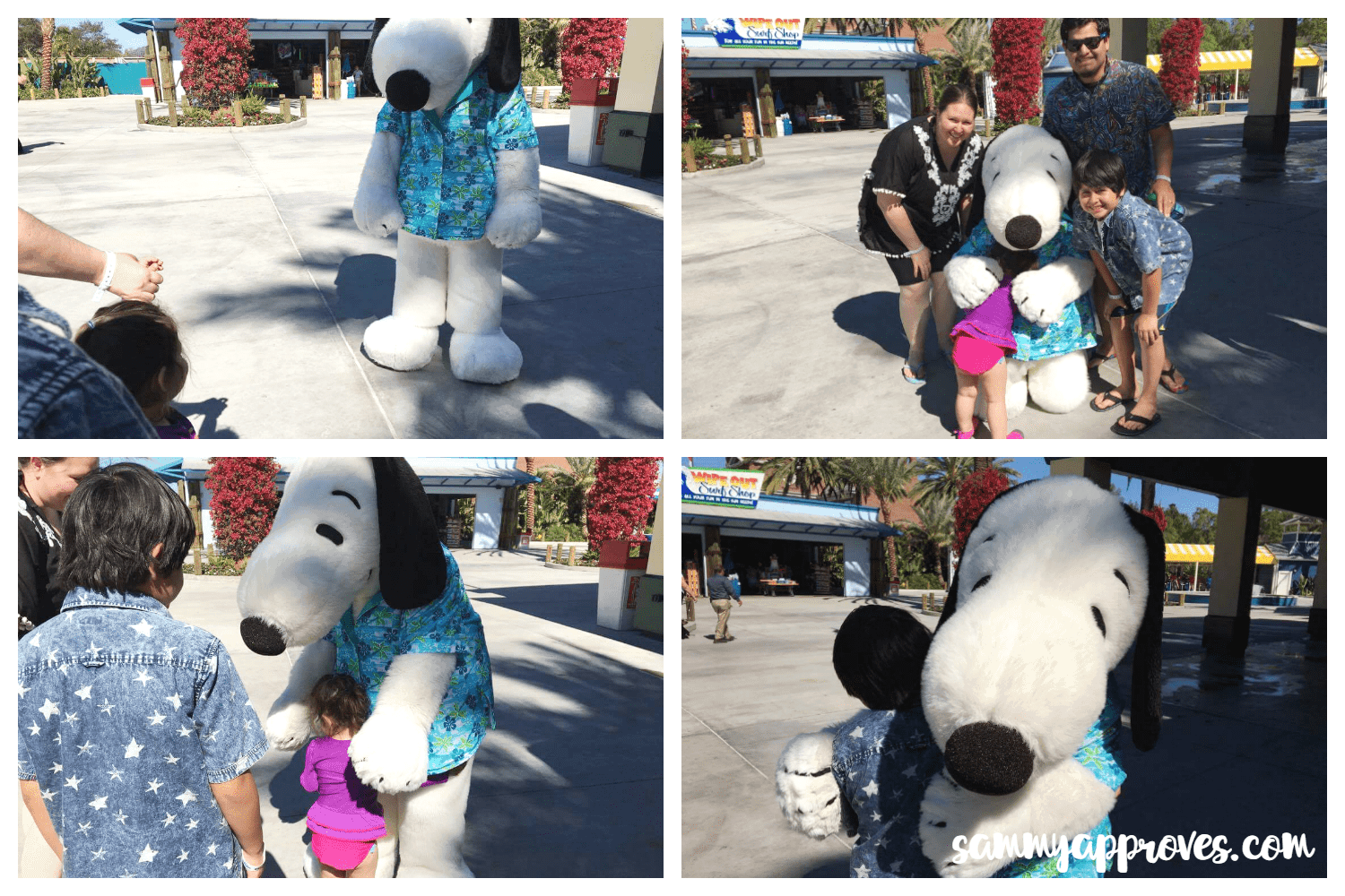 Keep Your Family Cool at the Expanded Knott's Soak City: Buena Park, CA