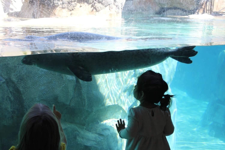 10 Family Vacation Tips for Visiting Utah   Spend Summer in Utah!