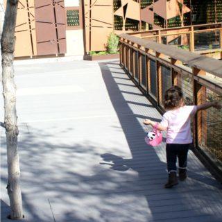 10 Family Vacation Tips for Visiting Utah | Spend Summer in Utah!