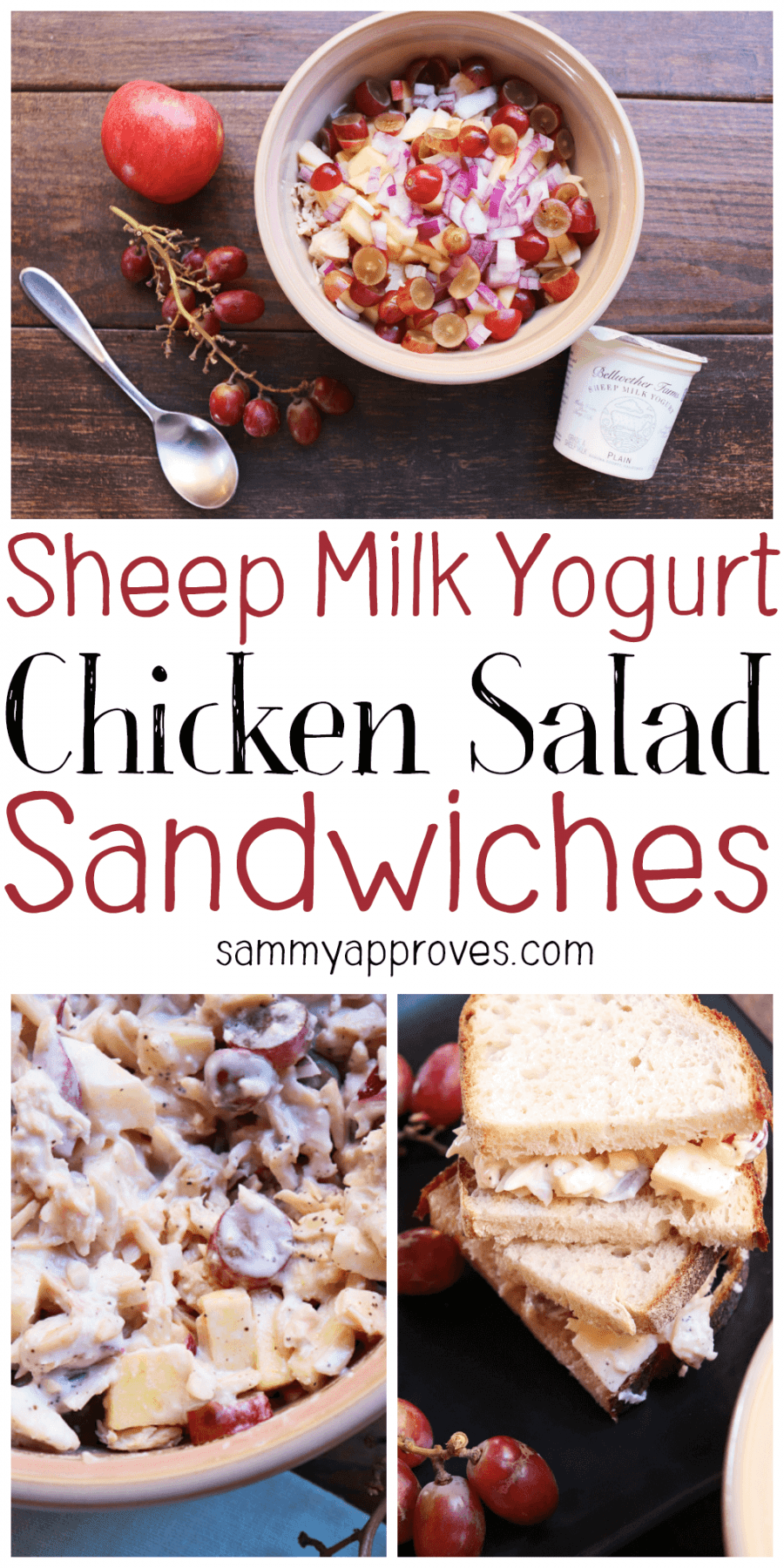 Sheep Milk Yogurt Chicken Salad Sandwiches
