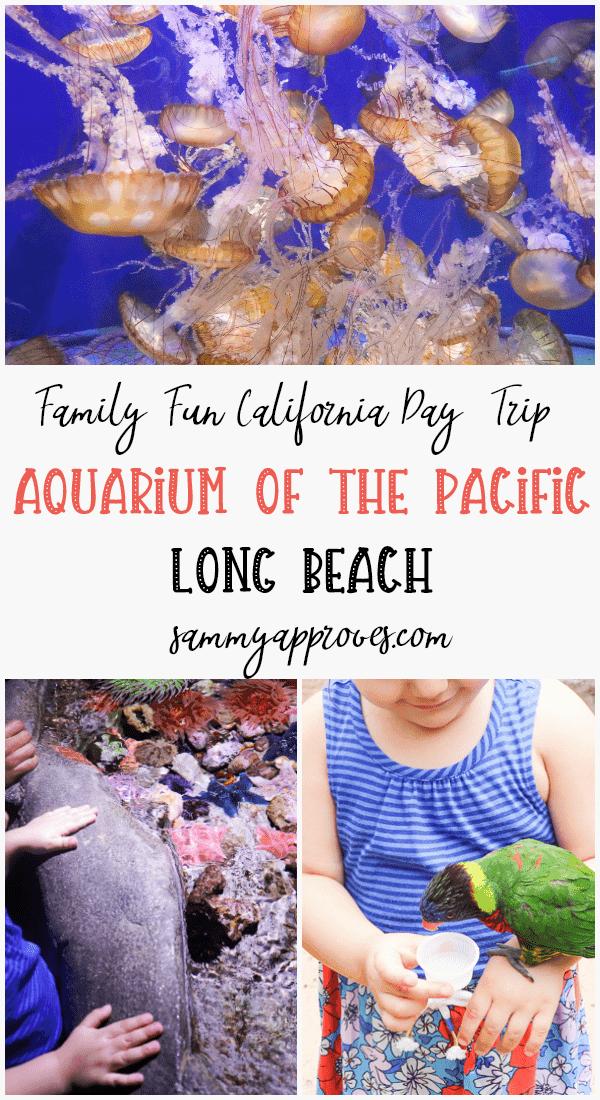Family Fun California Day Trip | Aquarium of the Pacific Long Beach