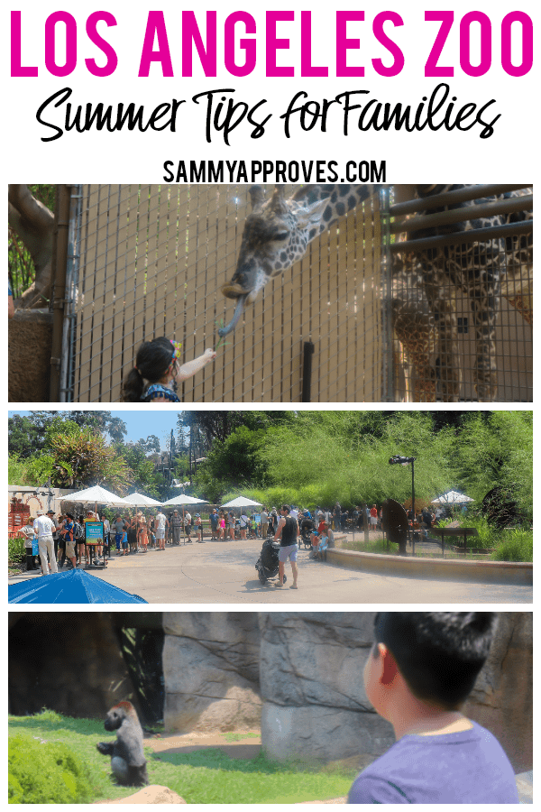 Los Angeles Zoo Summer Tips for Families