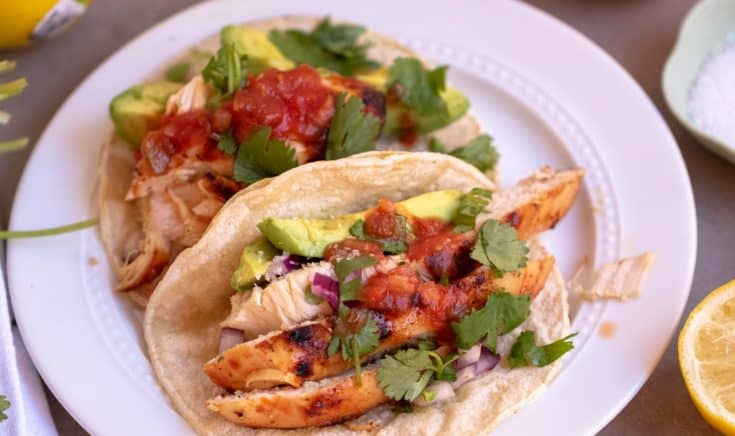 Marinated Grilled Chicken Tacos